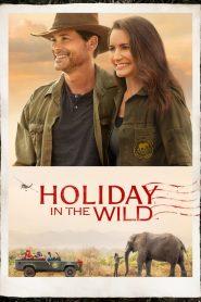 Crăciun în sălbăticie – Holiday in the Wild